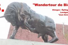 Wandertour-de-Bier 2015 - Ehingen